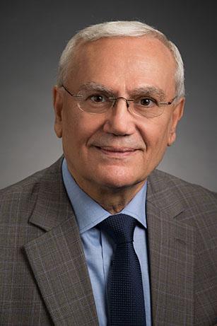 Khalil N. Rizk